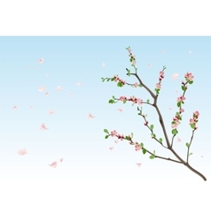 Spring season flowering branch with new leaves vector