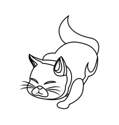 cat animal pet adorable outline vector image