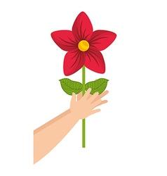 Flower gift vector