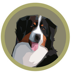 Portrait of a bernese mountain dog vector