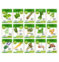 Price cards set for spices and herbs vector