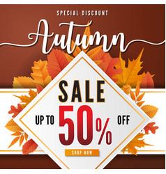 Autumn sale sbanner background design vector