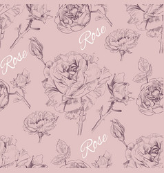 Rose pattern 2 vector
