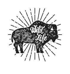 wild life grunge style bison silhouette isolated vector image