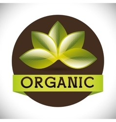 Natural and organic vector