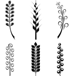 Set of plant elements vector