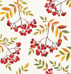 Rowan berries seamless autumn pattern vector image vector image
