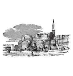 Citadel cairo vintage engraving vector