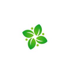 green leaf circle botany logo vector image