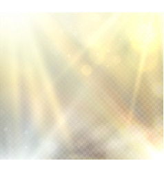 Transparent sunlight flare light effect vector