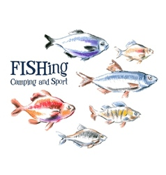 Fresh fish logo design template seafood vector