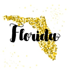 Golden glitter of the state of Florida vector image