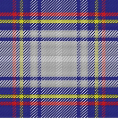 seamless pattern Scottish tartan State of Florida vector image