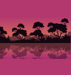 silhouette of jungle with reflection at night vector image