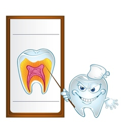 tooth with pointer display teeth in section vector image
