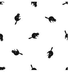 Canadian beaver pattern seamless black vector