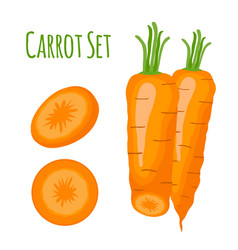 carrots setcartoon flat style vector image vector image