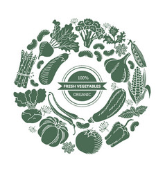 vegetables in a circle vector image
