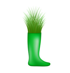 Grass growing from green rubber boot vector