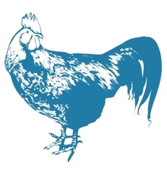 Blue rooster symbol 2017 by chinese calendar vector