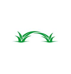 leaf landscaping logo vector image