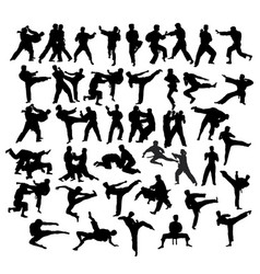 martial art sport activity vector image vector image
