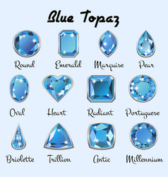 Types of cuts of blue topaz vector