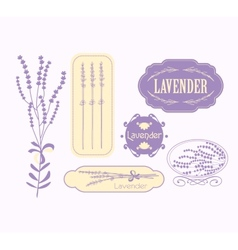 Vintage lavender background aromatherapy and spa vector