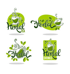 Green and herbal tea collection of organic logo vector