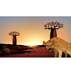 Hyena in the field vector
