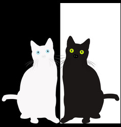 black and white cats vector image