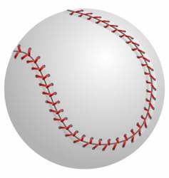 baseball isolated vector image vector image