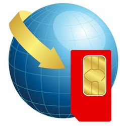 Sim card with globe and arrow vector image