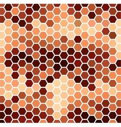 Brown Hexagonal Pattern vector image