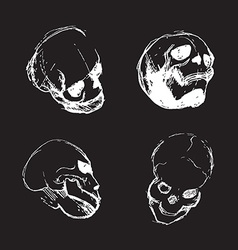 Skull from different views vector image vector image