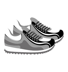 Shoes tennis isolated icon vector