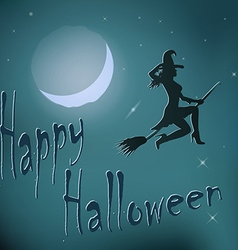 Halloween night witch riding broom vector