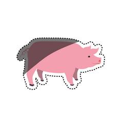 Pig farm animal vector