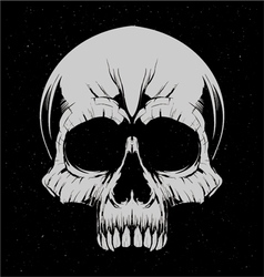 White Skulls vector image vector image