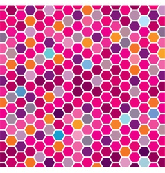 Colorful grid vector image vector image