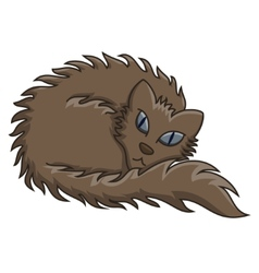 Dark brown fluffy cat vector