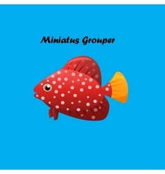 Miniatus grouper fish vector