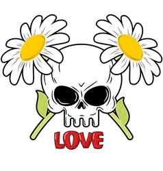 Skull and flowers Daisies and head of skeleton vector image