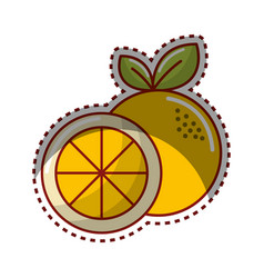 Sticker orange fruit icon stock vector