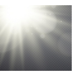 white light effect sunlight beams vector image vector image