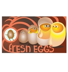 Fresh eggs sit in chicken ready to communicate vector