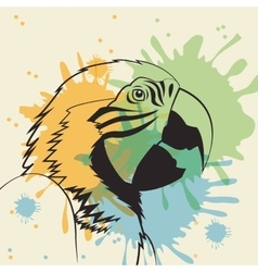Parrot bird icon Animal and art design vector image