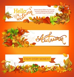 Horizontal fall banners set vector