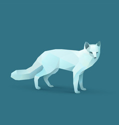 Polar fox vector