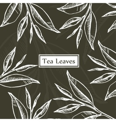 Tea leaves design template vector image vector image